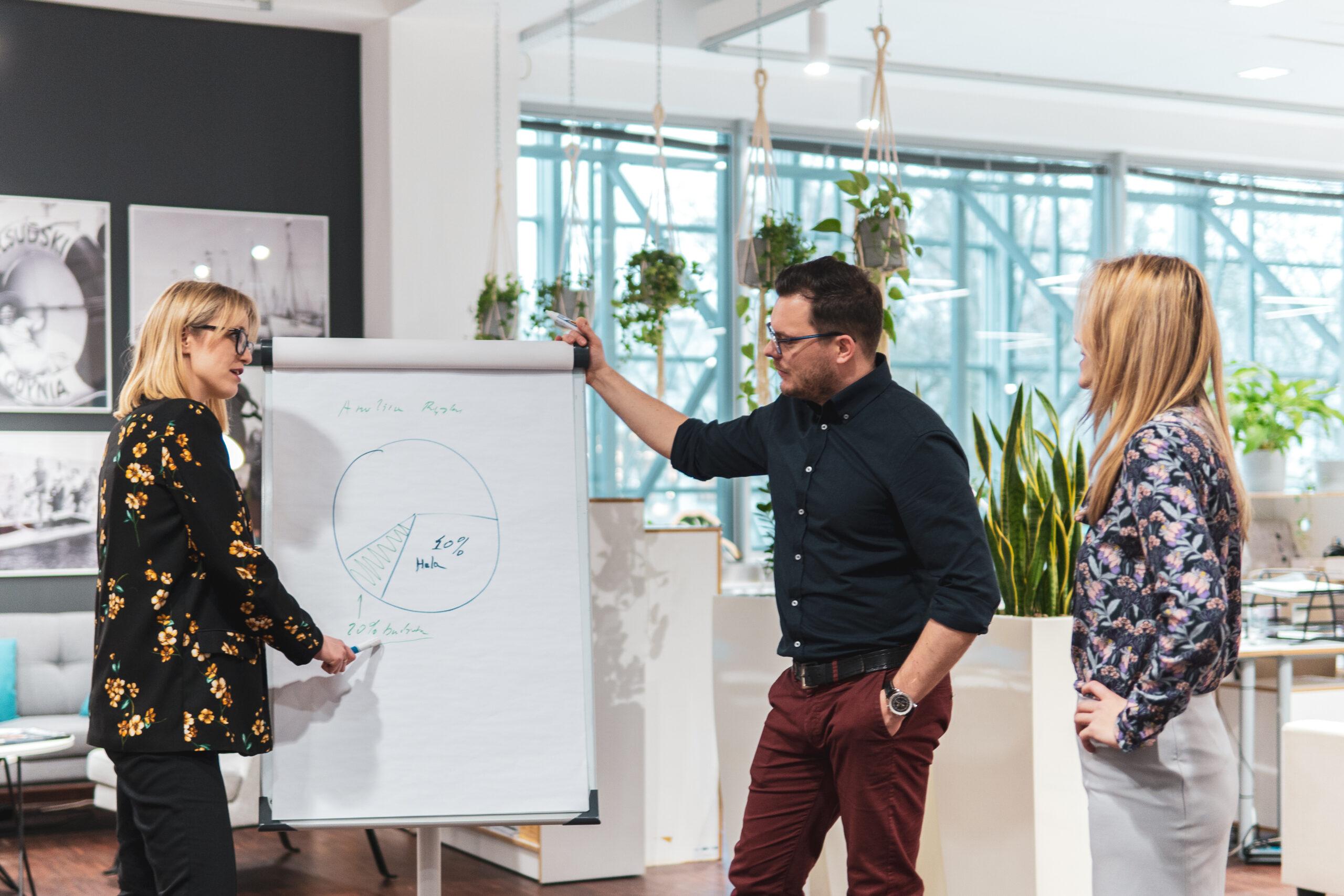 pracownicy firmy Innovatree w biurze