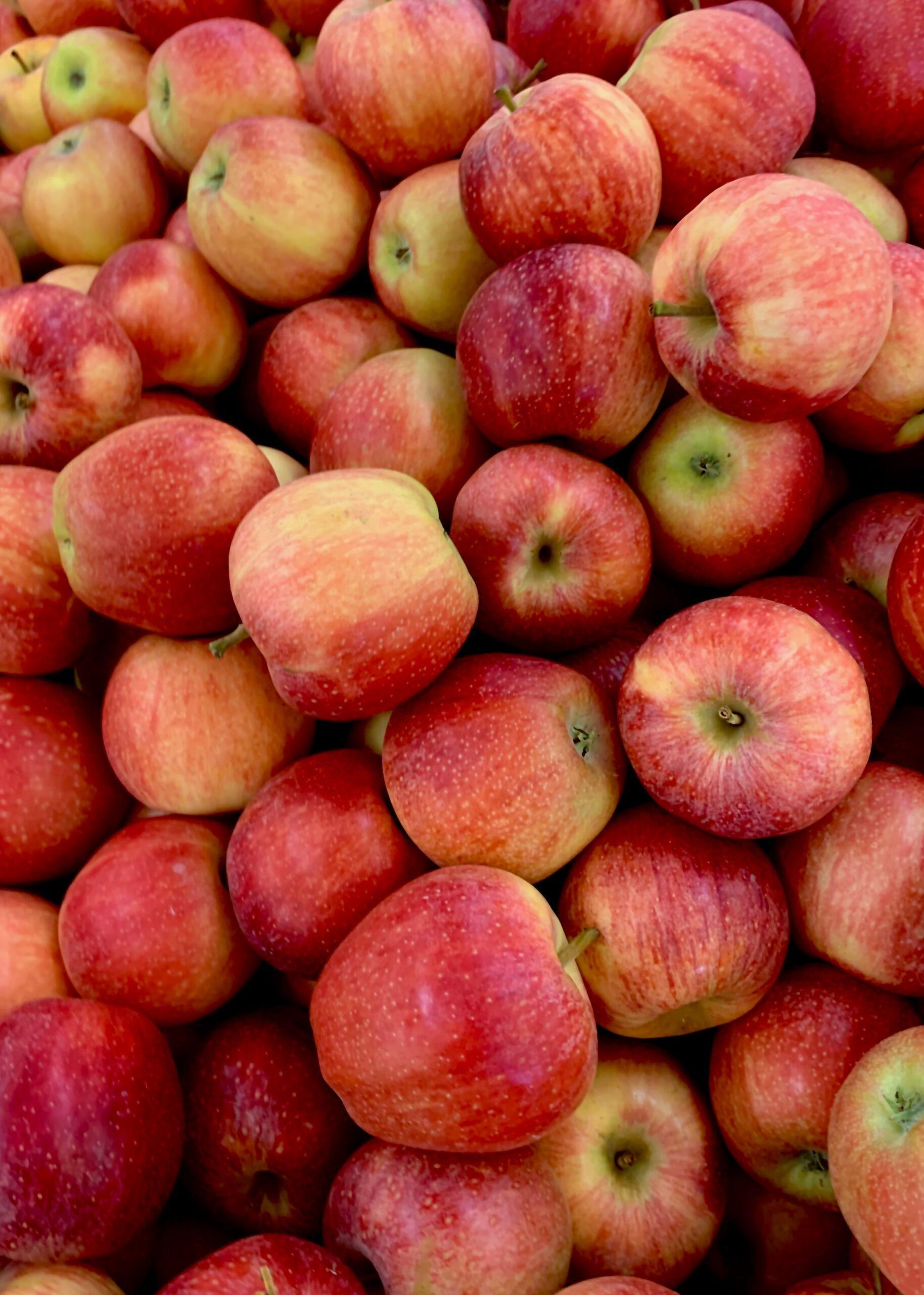 czerwono-żółte jabłka